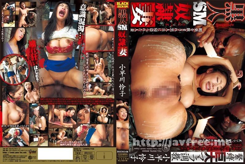 [BSM-01] 緊縛巨大マラ調教 黒人SM奴隷妻 小早川怜子
