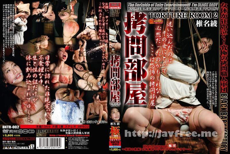 [DXTR-002] 拷問部屋 TORTURE ROOM 2 椎名綾