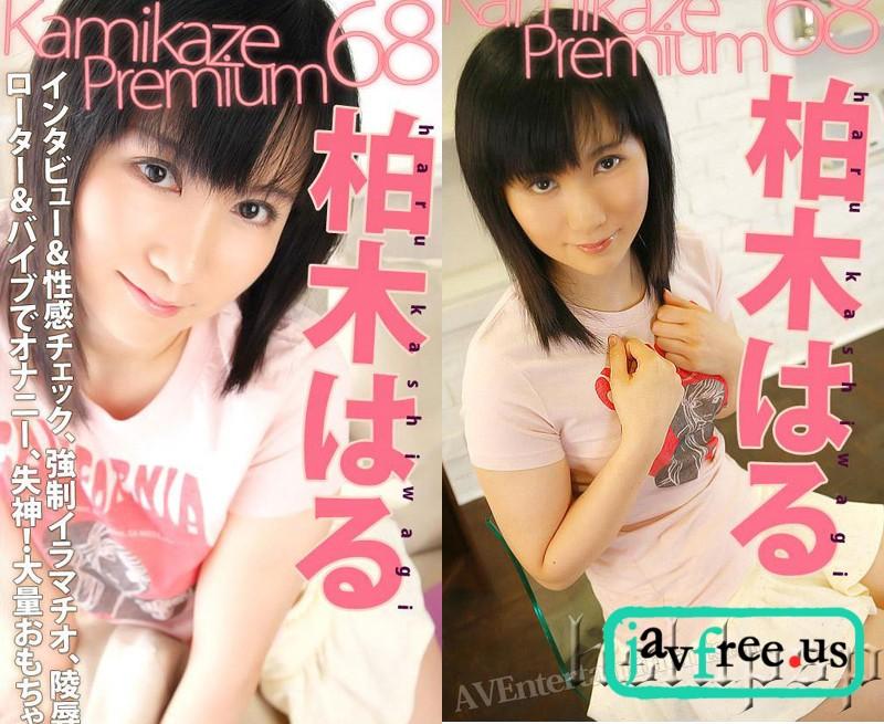 [KP 068] Kamikaze Premium Vol. 68 : Kashiwagi Haru 柏木はる カミカゼプレミアム Kashiwagi Haru Kamikaze Premium