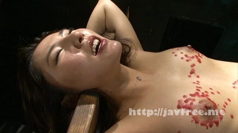 [ADVO 069] 倒錯求道者の夜8 小口田桂子 ADVO