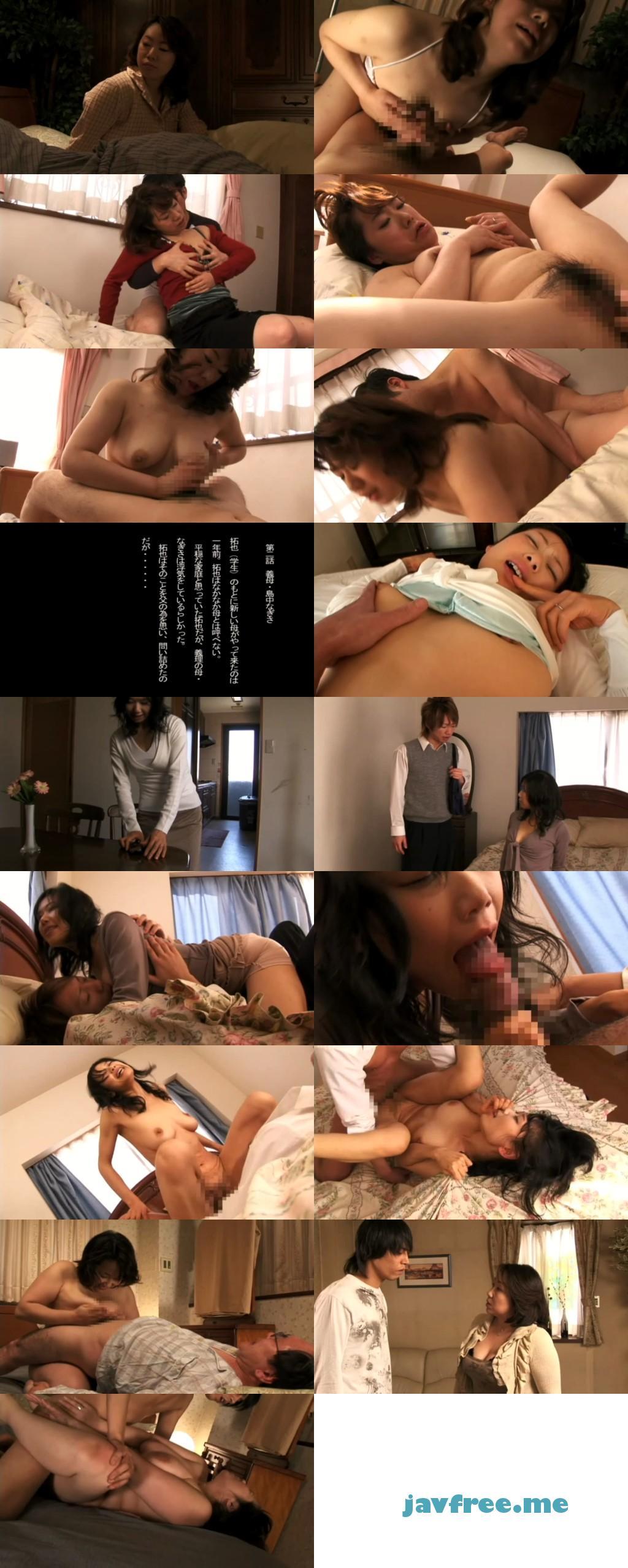 [ALX 453] 乳義母 包みこまれる母性のぬくもり 絹田美津 島中なぎさ 宮川サキ ALX