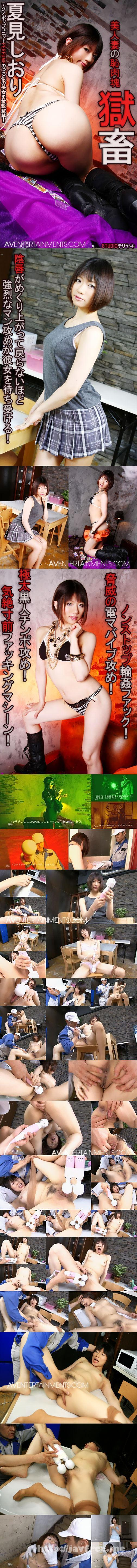 [BT 47] プレミアムモデル 獄畜 美人妻の恥肉塊 : 夏見しおり 夏見しおり Shiori Natsumi BT