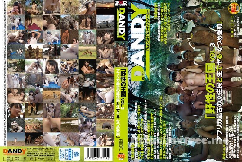 [DANDY 462] 「野性の王国」VOL.3 アフリカ最古の原住民と生でヤる なつめ愛莉 なつめ愛莉 DANDY
