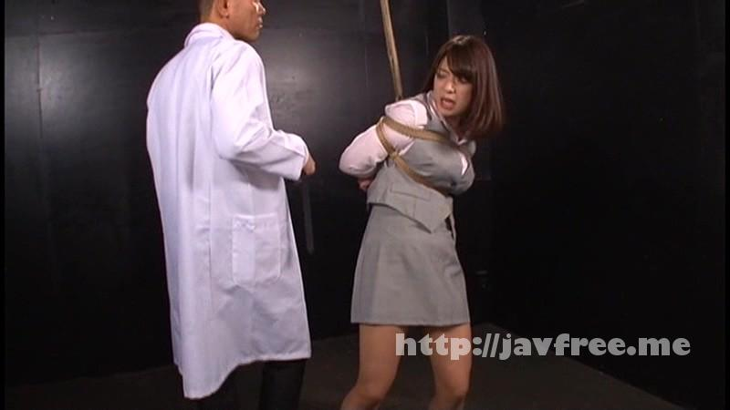 [DXBB-014] Breaking Acme〜偽密偵残酷イキ地獄 ACT6〜 尾上若葉