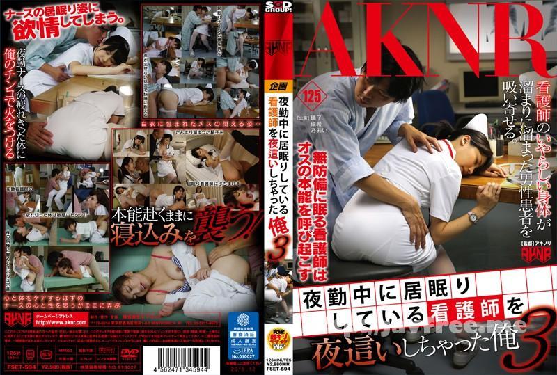 [FSET-594] 夜勤中に居眠りしている看護師を夜這いしちゃった俺 3