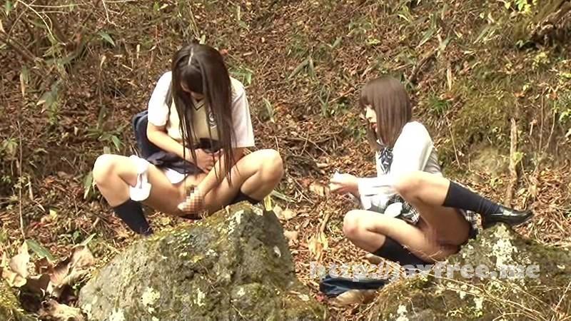 [FSET 599] 下校中に野ションする女子校生 2 FSET