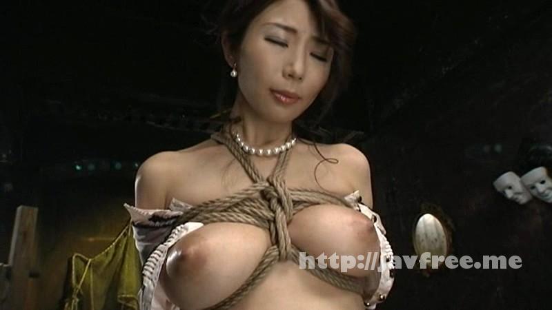 [GTJ 044] 縄に寝取られた妻 篠田あゆみ 篠田あゆみ GTJ