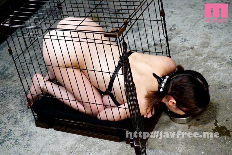 [MIDE 290] BDSM 緊縛×拘束具×人体固定 吉川あいみ 吉川あいみ MIDE