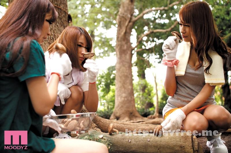 [MIMU 005] 裏山にはえた「媚薬キノコ」を食べてしまった欲求不満な兄嫁が発情! 兄たちがゴルフに行ってしまったので兄嫁は僕のチ○ポを奪い合うのです MIMU