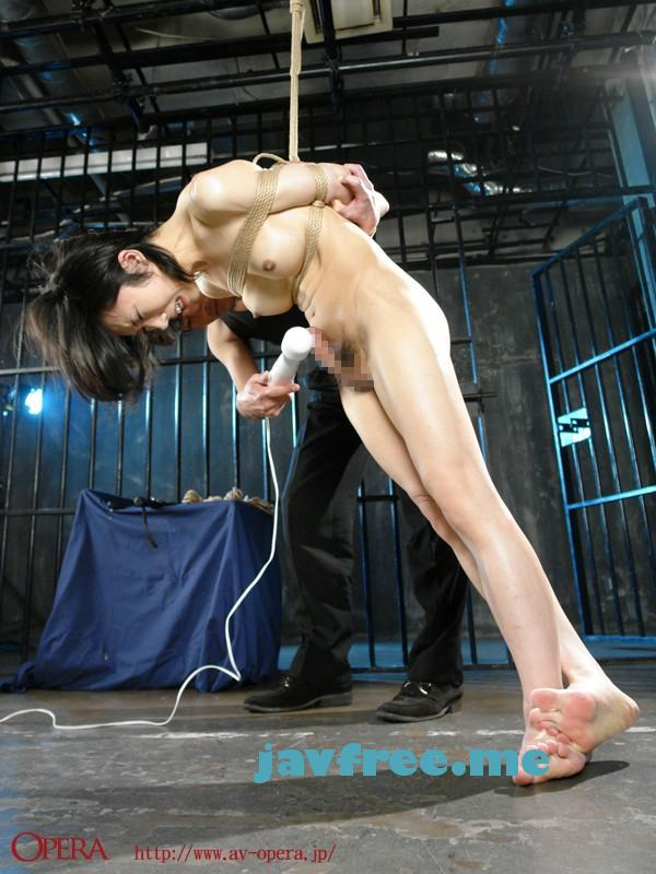 [OPSD 032] ニューハーフSM8時間BEST 霧島レナ 白鳥らん 志穂美カノン 伊織乃愛 しずか Shemale OPSD