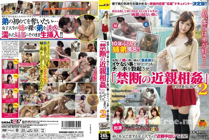 [SDMU 062] 成熟した姉の裸に触れた童貞弟はイケない事と知りつつもチ○ポを勃起させて「禁断の近親相姦」してしまうのか!? 2 SDMU