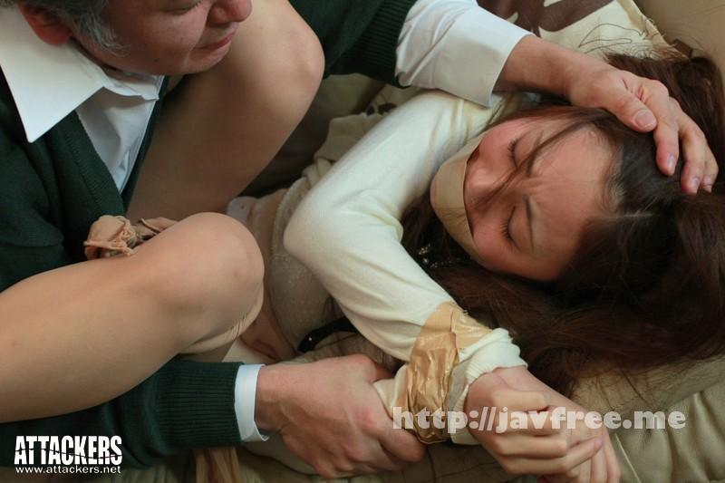 [SHKD 519] 被虐の家庭教師4 仁美まどか 被虐の家庭教師 仁美まどか SHKD
