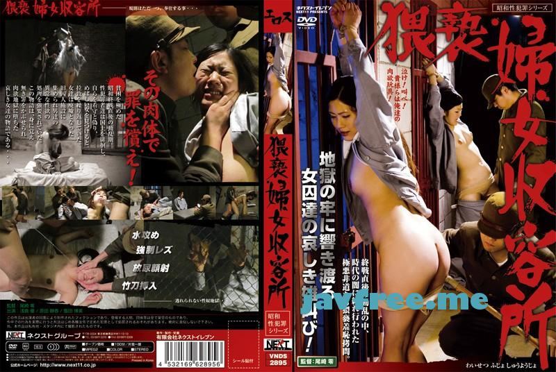[VNDS 2895] 猥褻婦女収容所 VNDS