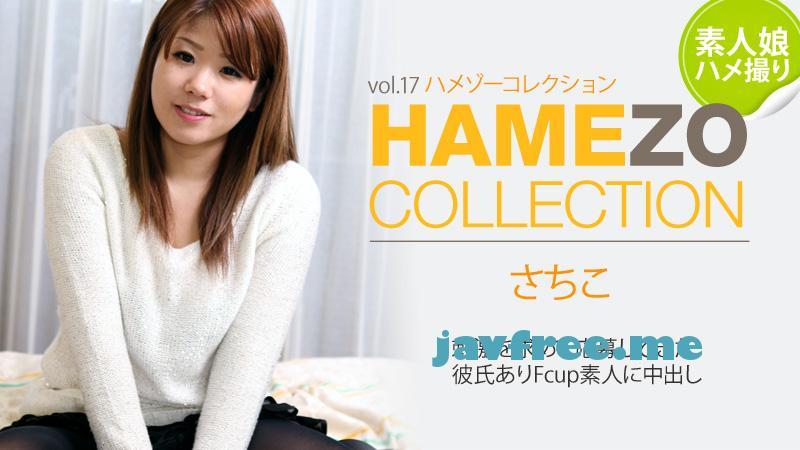 Heyzo 0326 HAMEZO~ハメ撮りコレクション~vol.17 さちこ heyzo