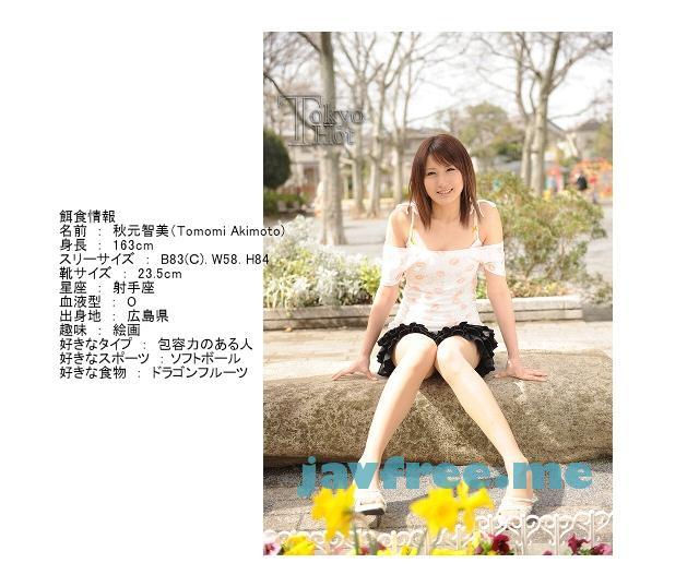 Tokyo Hot n0529 上玉CA嬲嬲姦孕々汁乗務 秋元智美 秋元智美 Tokyo Hot