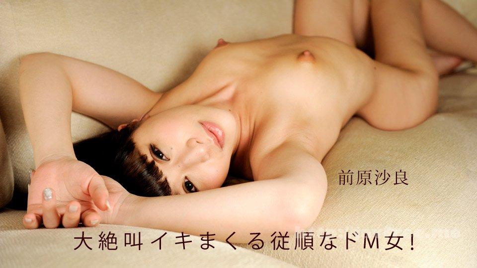 一本道 091019_897 大絶叫イキまくる従順なドM女! - image 091019_897-1pon on https://javfree.me