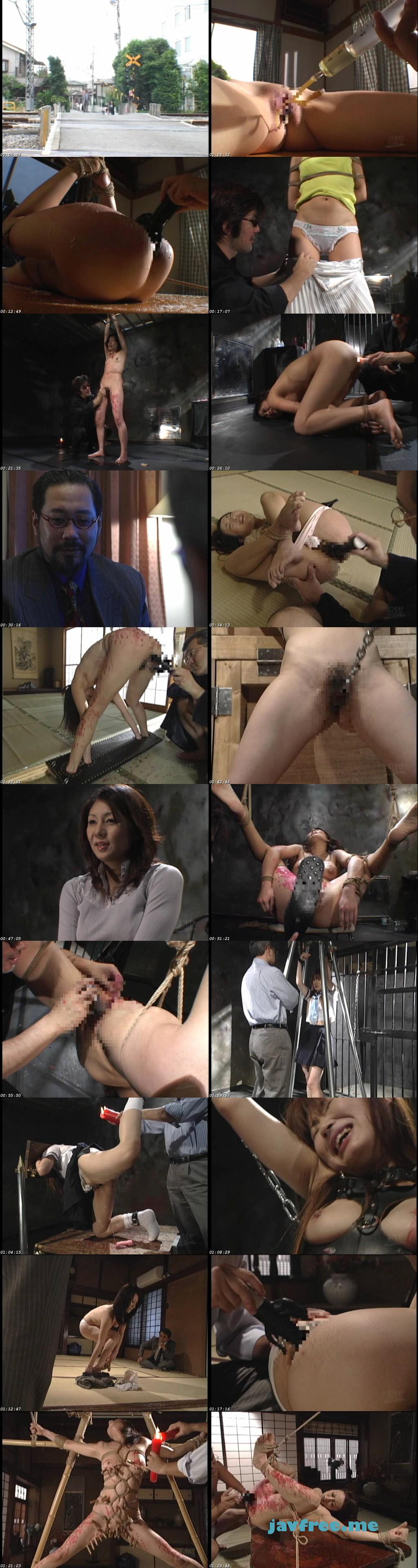 [ADV-SR0055] 性獣図鑑オムニバス 3 - image ADV-SR0055 on https://javfree.me