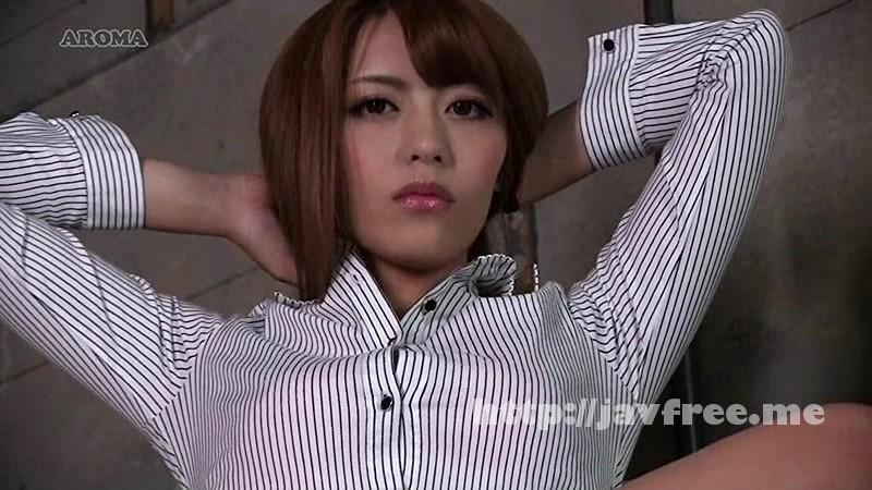 [ARM-406] 捕らわれ先でミニスカ美女に監視され続ける - image ARM-406-3 on https://javfree.me