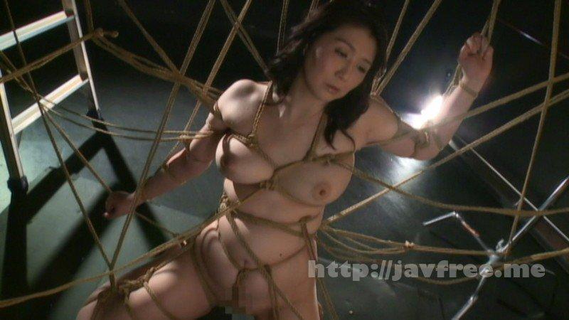 Heyzo 1642 ノンストップ!!アクメ天国~いっぱい欲しい!~ - image CETD-293-1 on http://javcc.com