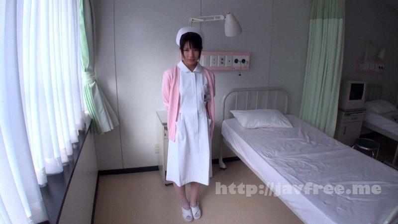 [HD][NITR-497] 尻穴狂い人間失格メスブタ婦人 - image CLO-033-1 on https://javfree.me