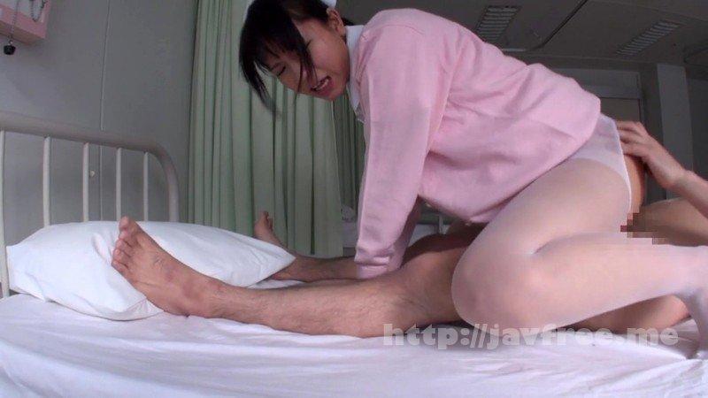 [HD][NITR-497] 尻穴狂い人間失格メスブタ婦人 - image CLO-033-13 on https://javfree.me