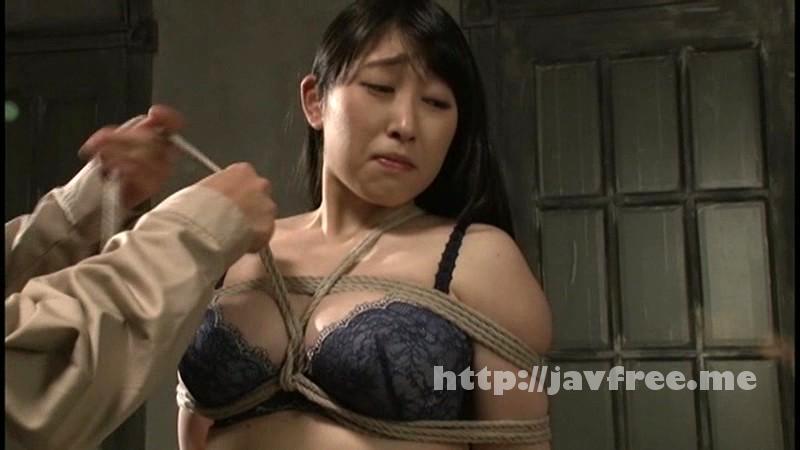 [CMC 152] 巨乳セレブ薔薇の肛門奴隷 永崎文 中園貴代美 cmc