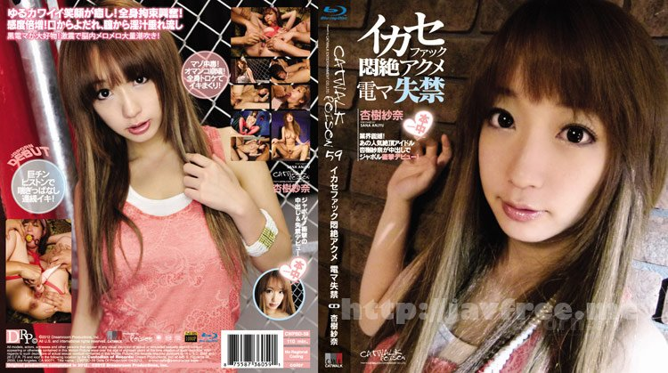 [CWPBD-59][CWP-59] CATWALK POISON 59 : Sana Anjyu - image CWPBD-59 on https://javfree.me