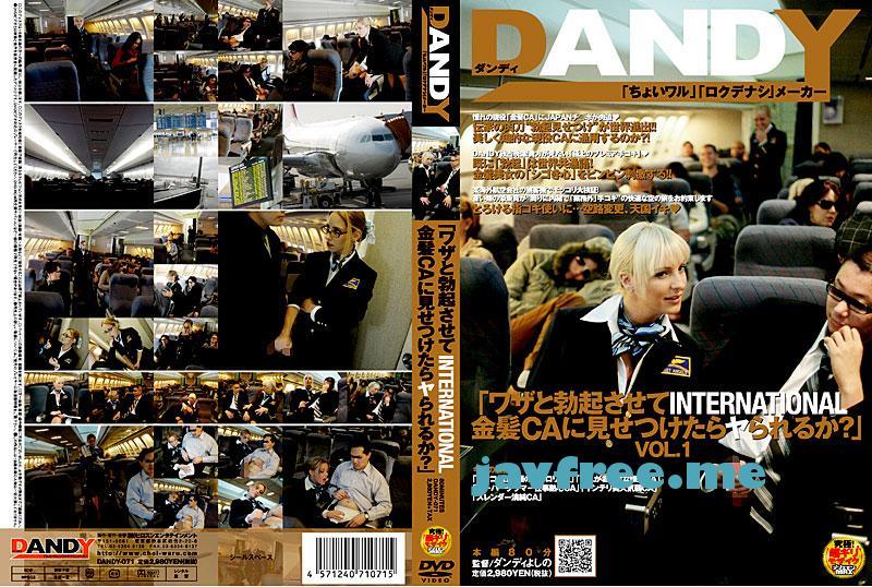 [DANDY-071] 「ワザと勃起させてINTERNATIONAL金髪CAに見せつけたらヤられるか?」 VOL.1 - image DANDY-071 on https://javfree.me