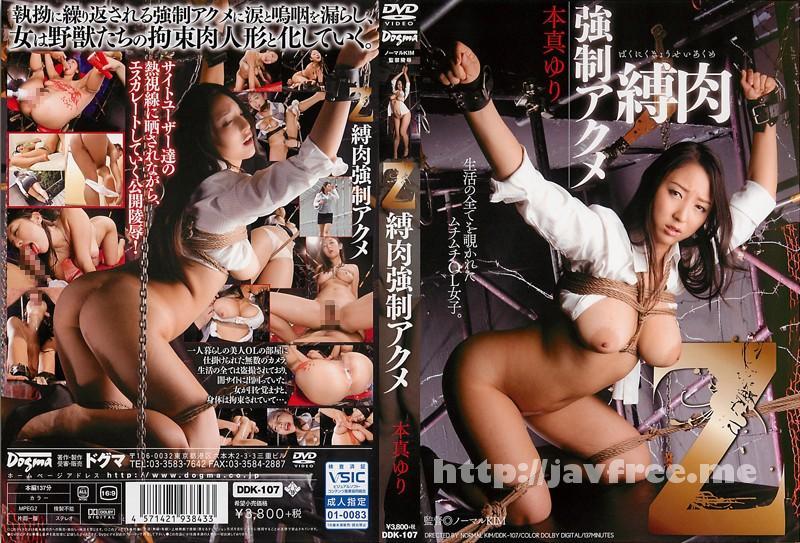 [DDK 107] Z 縛肉強制アクメ 生活の全てを覗かれたムチムチOL女子 本真ゆり 本真ゆり DDK