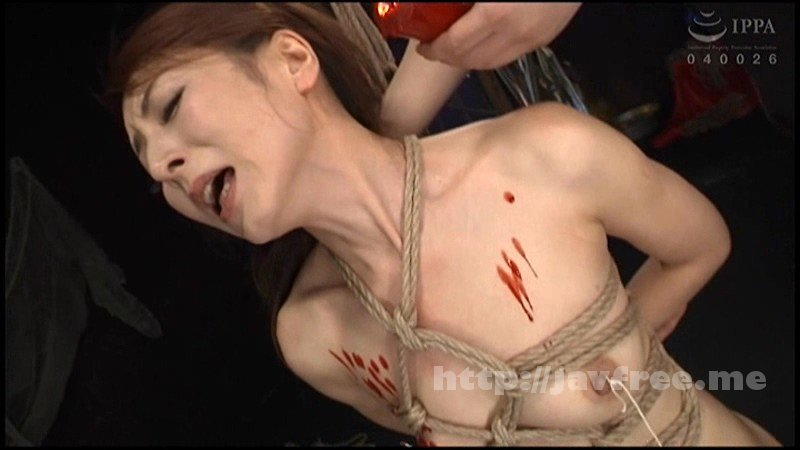 [DDT-607] 美しきM化粧 拷問・調教に悶え狂った女たち - image DDT-607-1 on https://javfree.me