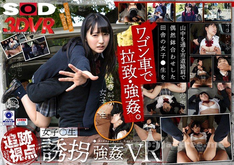 [DSVR-619] 【VR】【追跡視点】女子●生 誘拐強●VR - image DSVR-619 on https://javfree.me