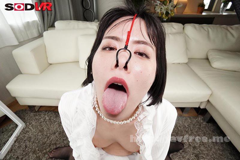 [DSVR-836] 【VR】美女の鼻フックSEX 高飛車な女の歪んだブタ鼻顔をじっくり観賞しながらハメる侮辱セックス - image DSVR-836-17 on https://javfree.me