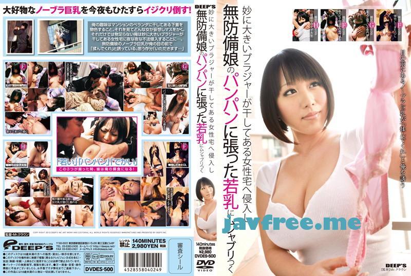 [DVDES 500] 妙に大きいブラジャーが干してある女性宅へ侵入し無防備娘のパンパンに張った若乳にムシャブリつく DVDES