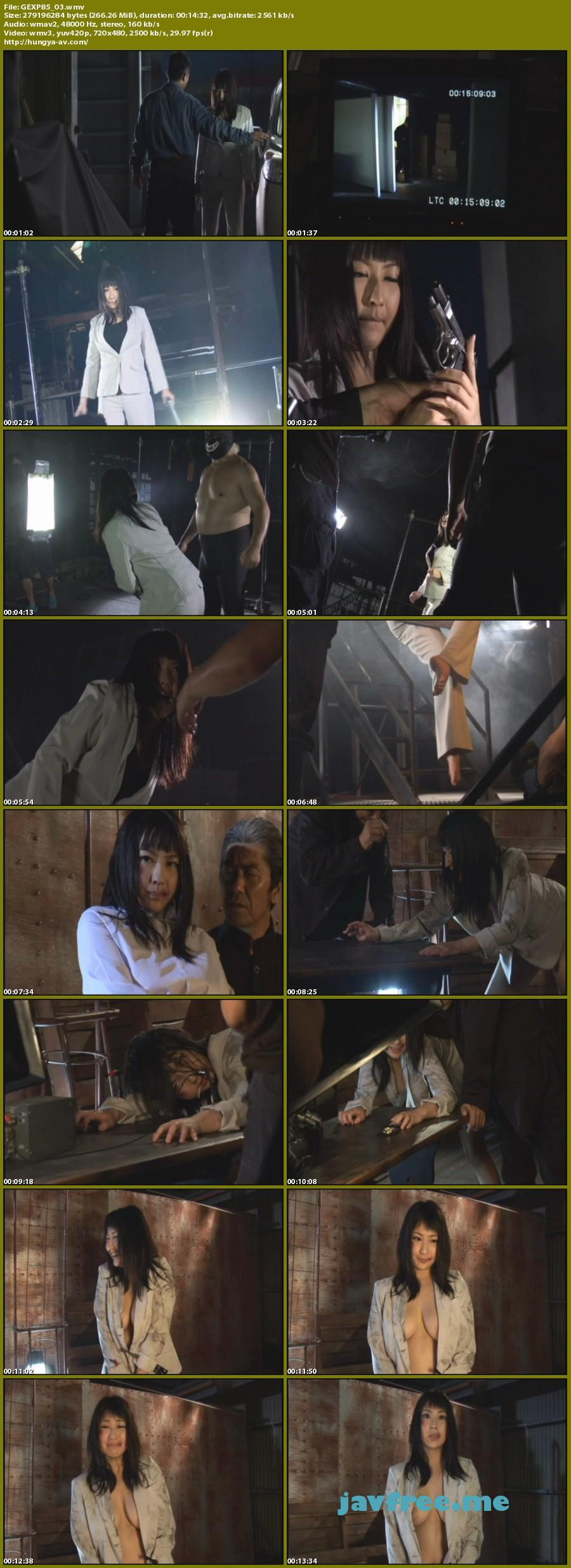 [GEXP 85] 女捜査官拷問凌辱 遥めぐみ Megumi Haruka GIGA 遥めぐみ Megumi Haruka GIGA
