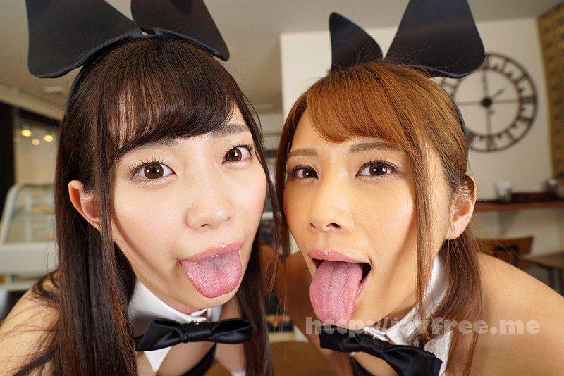 [KMVR-499] 【VR】舐めプレイ×バイノーラル×バニーガールカフェへようこそ 美谷朱里・花咲いあん - image KMVR-499-2 on https://javfree.me