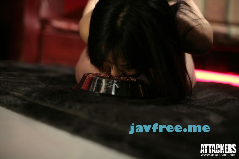 [HD][RBD-205] 奴隷街 第三章 - image RBD-205l on https://javfree.me