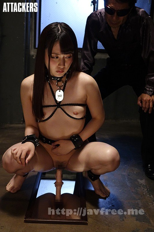 [HD][RBD-910] 奴隷色のステージ40 - image RBD-910-4 on https://javfree.me