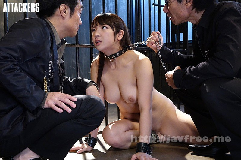 [HD][RBD-922] 新奴隷捜査官7 神咲詩織 - image RBD-922-7 on https://javfree.me