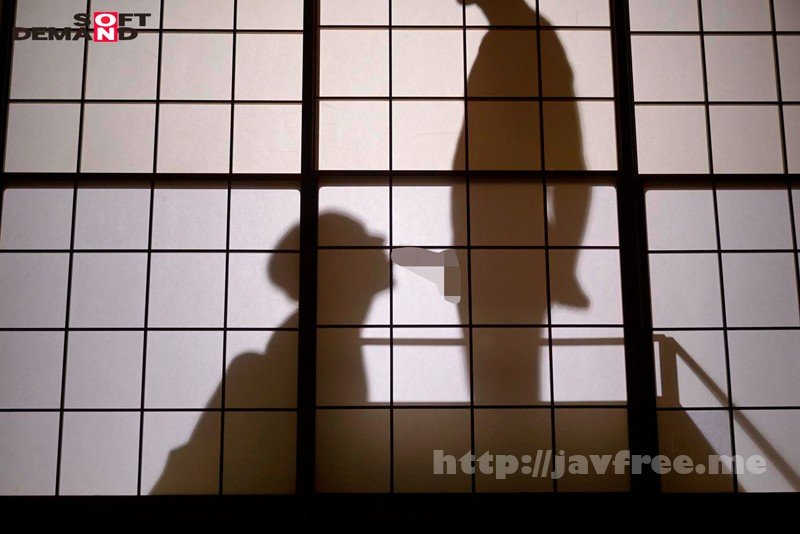 [HD][ZNN-001] 強姦記録。OL3名の膣内暴行中出し映像110分。 - image SDDE-529-4 on http://javcc.com