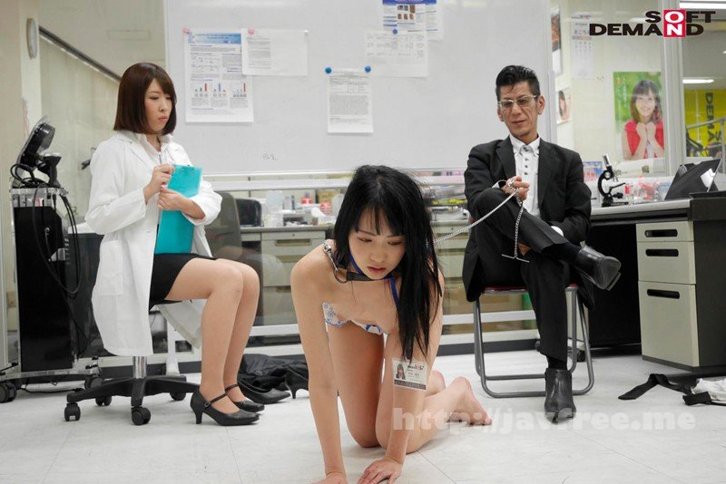 [SDMU-783] 「SMで快感は得られるのか?」をSOD女子社員が真面目に検証してみた結果 同僚の視線さえ快感にして緊縛雌犬プレイで社内失禁!SOD性科学ラボレポート6