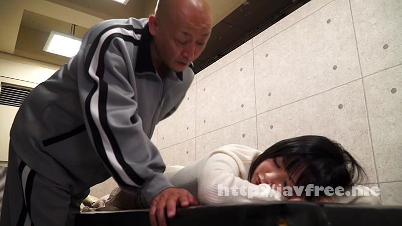 [SGRS-010] 新説堕落論 女教師篇 - image SGRS-010-8 on https://javfree.me