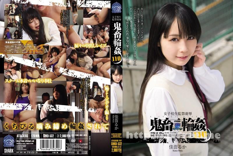 [SHKD-532] 女子校生監禁凌辱 鬼畜輪姦110 佳苗るか - image SHKD-532 on https://javfree.me