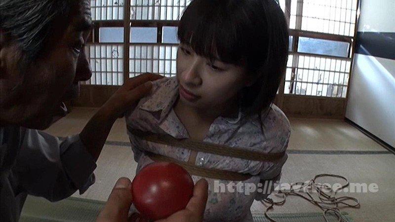 [HD][SMSD-015] 花嫁崩壊 奴隷のまぐわい 春菜はな - image SMSD-015-5 on https://javfree.me