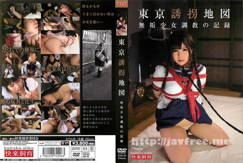 [STD 29] 東京誘拐地図 無垢少女調教の記録 STD