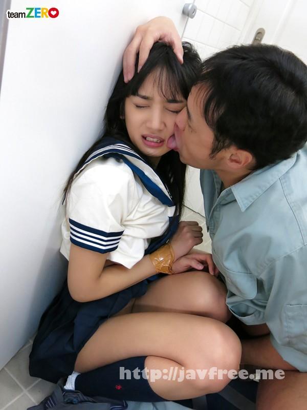 [TEAM-065] 通学途中に痴漢の手によって絶頂を教え込まれた女子校生 辻本杏 - image TEAM-065-2 on https://javfree.me