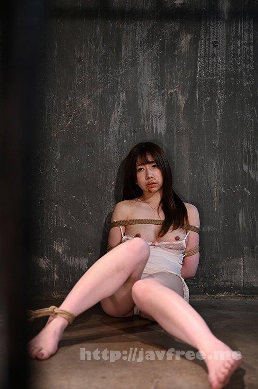 [HD][TEN-036] 緊縛飼育~危険な毒花~3 大浦真奈美 - image TEN-036-4 on https://javfree.me