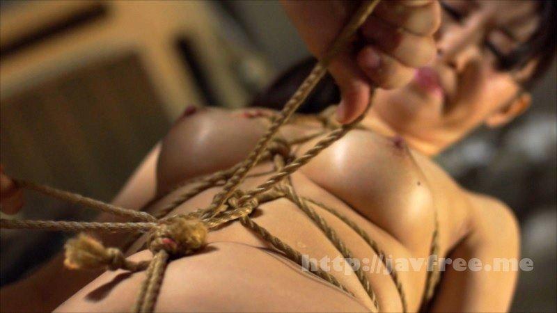 [HD][XRW-714] 食い込む縄で濡れた女12人4時間 - image XRW-714-2 on https://javfree.me
