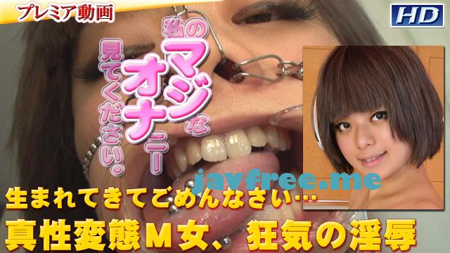 gachip186 ありす -別刊マジオナ41- - image gachip186 on https://javfree.me