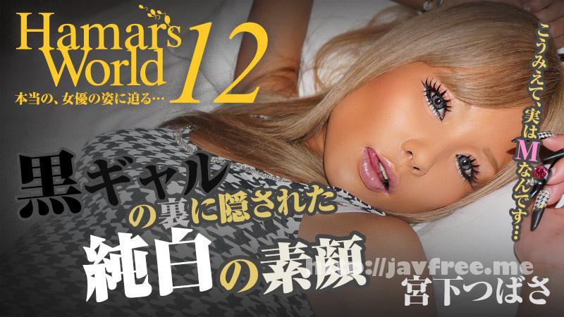 Heyzo 0518 宮下つばさ Hamar's World 12~黒ギャルの裏に隠された純白の素顔~