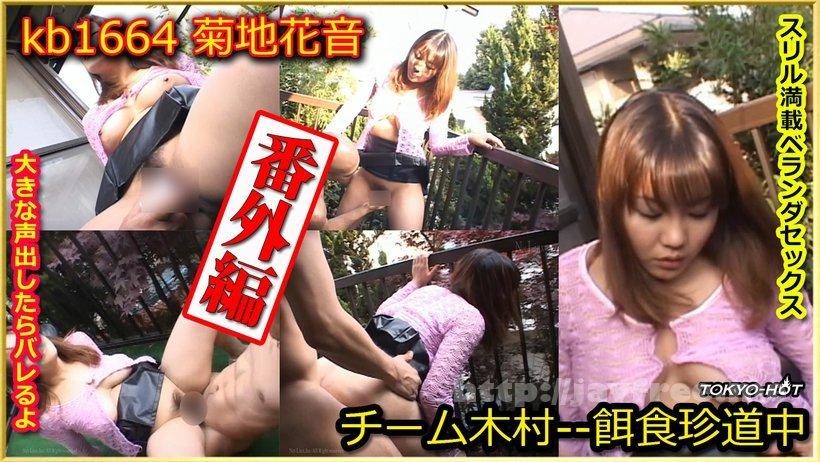 Tokyo Hot kb1664 Go Hunting! Extra Edition--- Kanon Kikuchi - image kb1664 on https://javfree.me